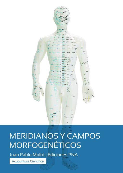 Campos morfogenéticos y meridianos