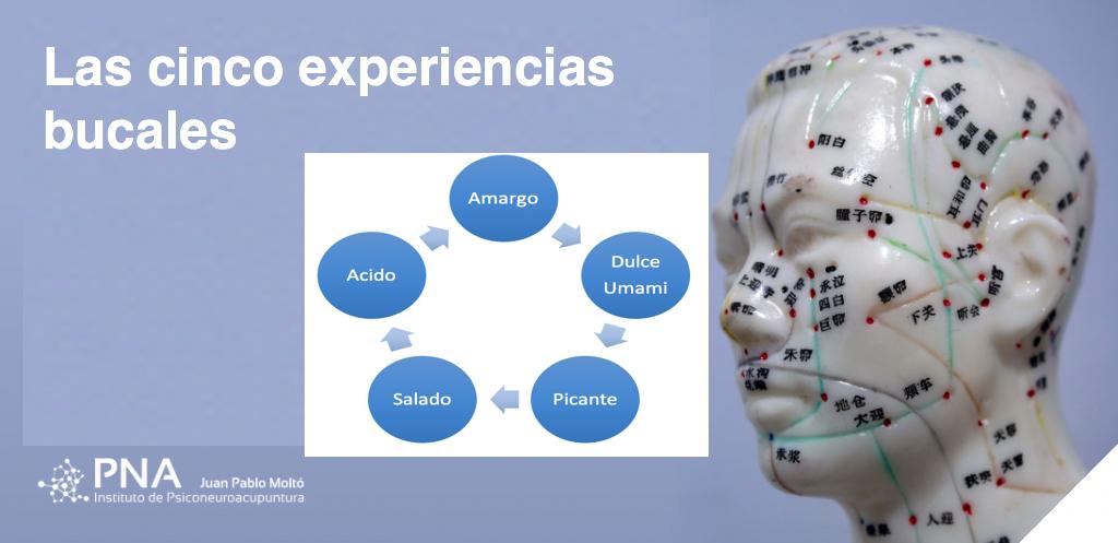 Los cinco experiencias bucales, no los cinco sabores.