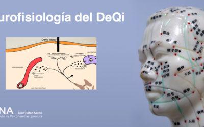 Neurofisiología de la llagada de la energía.